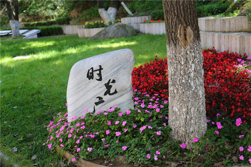 八达岭墓地环境