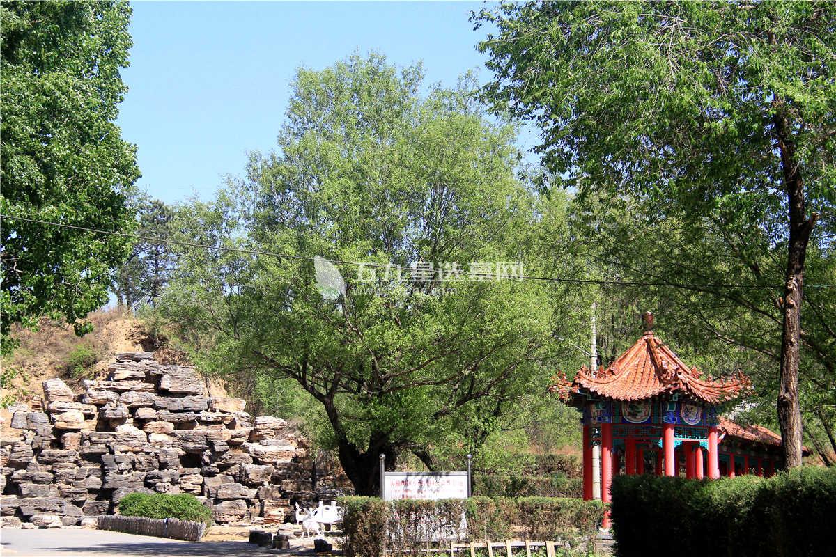 福安园墓地公墓景观